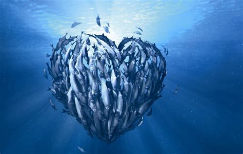 World_Oceans_Day_What_is_M&S_doing_to_protect_our_Oceans?