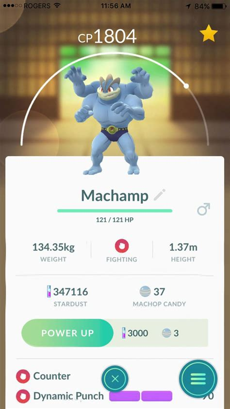 Best Pokémon Go movesets for attack and defense — Updated