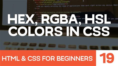 HTML & CSS for Beginners Part 19: Colors with CSS - hex