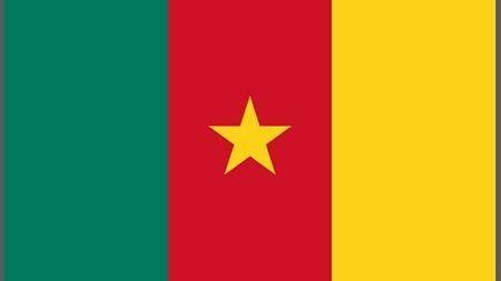 Germany and Cameroon: Bilateral Relations - Federal