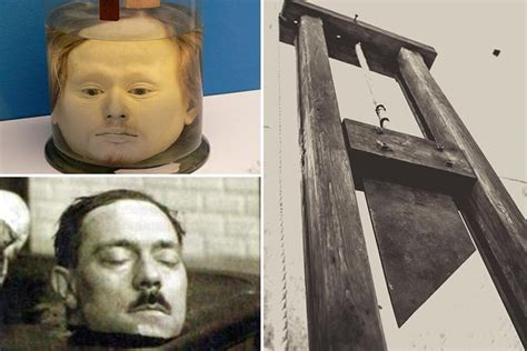 Inside the gruesome beheading experiments that 'proved